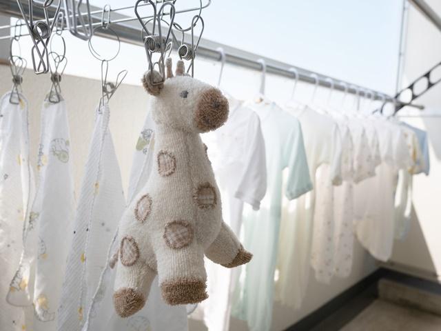 ぬいぐるみを洗濯する